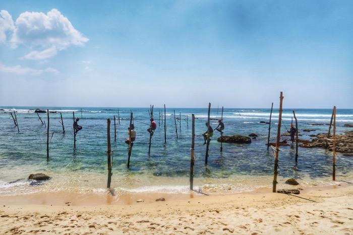 pescari sri lanka picioroange