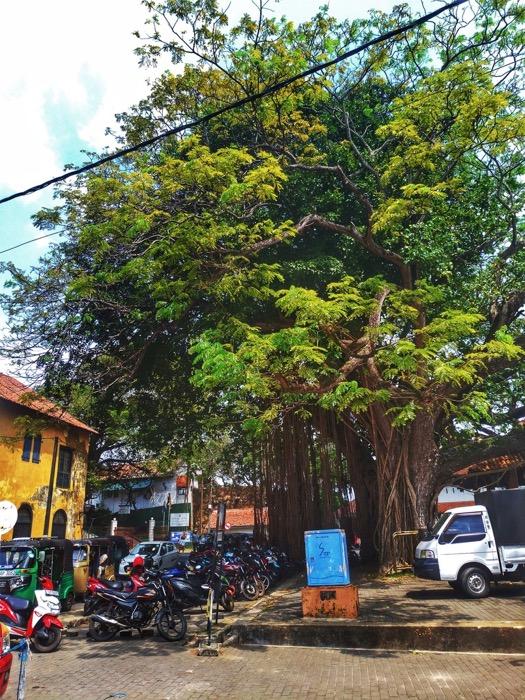 Fortul Galle Sri Lanka 2