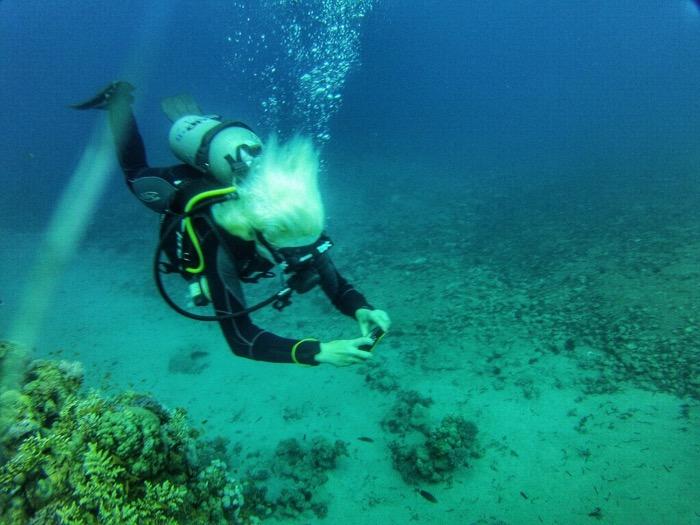 Advanced Open Waters Dahab Scufundari 28