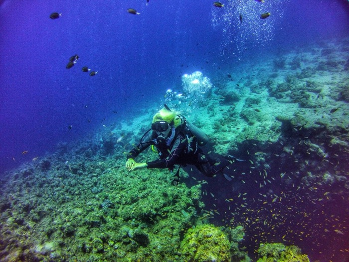 Advanced Open Waters Dahab Scufundari 17