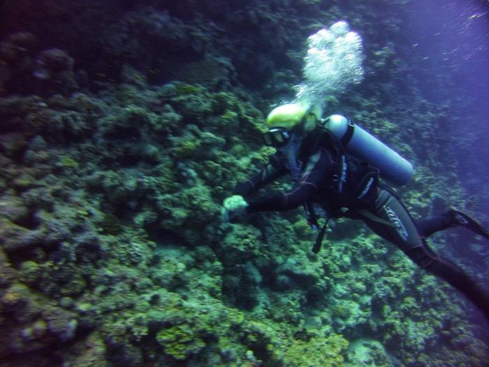 Advanced Open Waters Dahab Scufundari 14