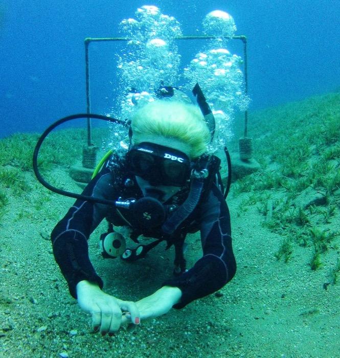 scuba diving dahab