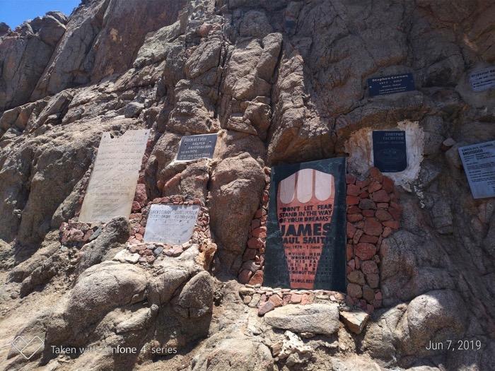Gaura Albastra Dahab Sinai 10