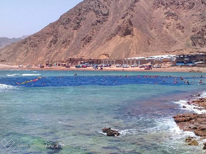 Gaura Albastra Dahab Sinai 1