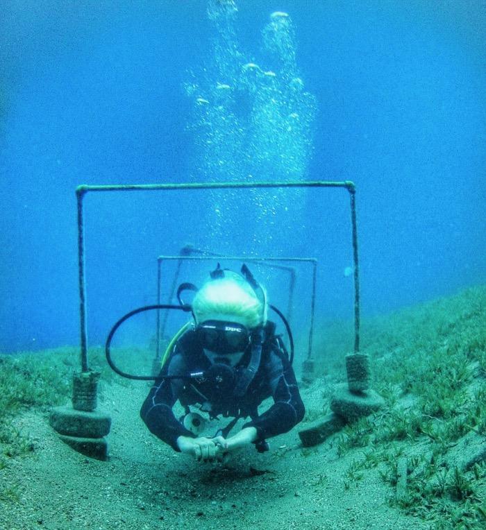 flotabilitate scufundari dahab