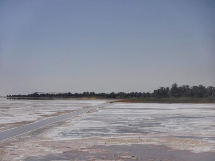 seitoun lac sarat oaza siwa 24