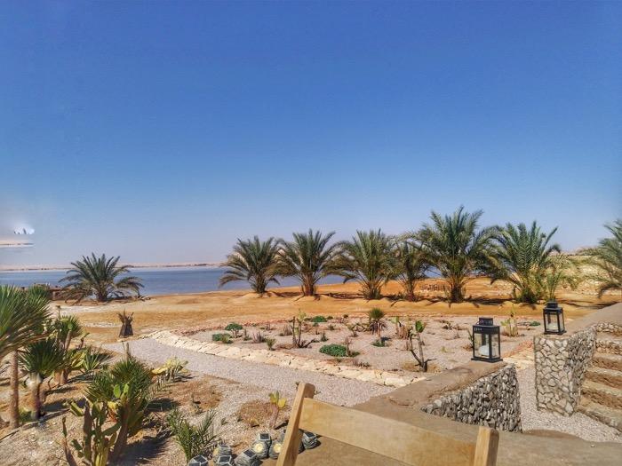 hotel oaza siwa 3