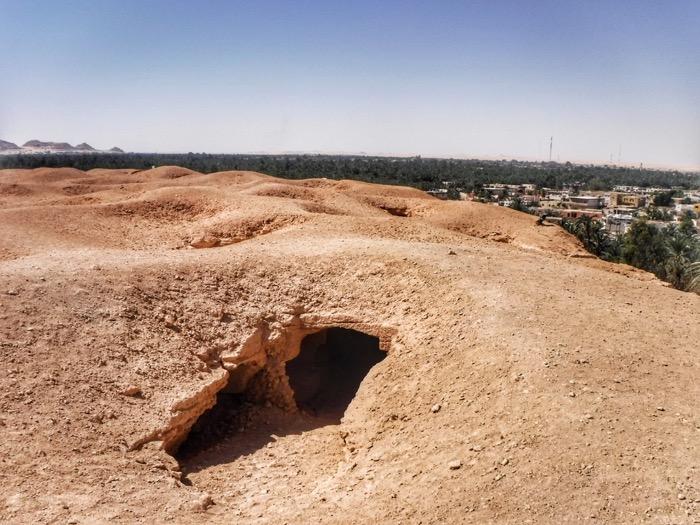 Oaza Siwa 33