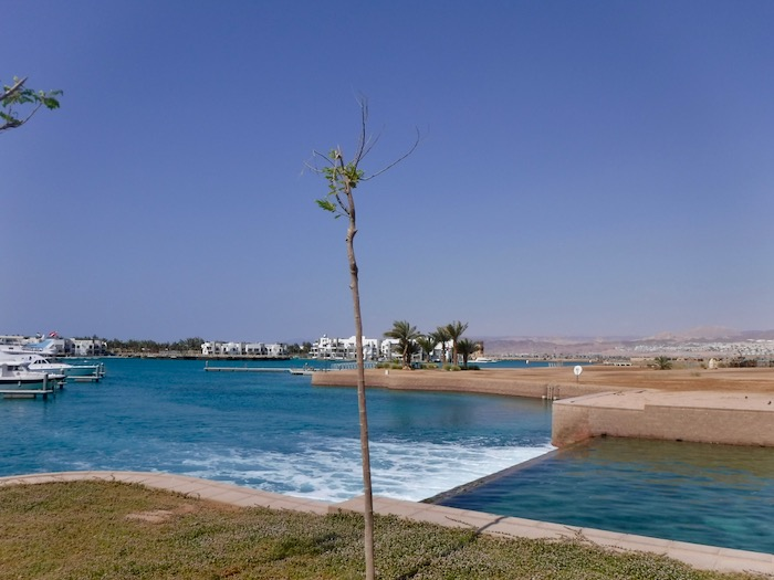 plaje aqaba 14