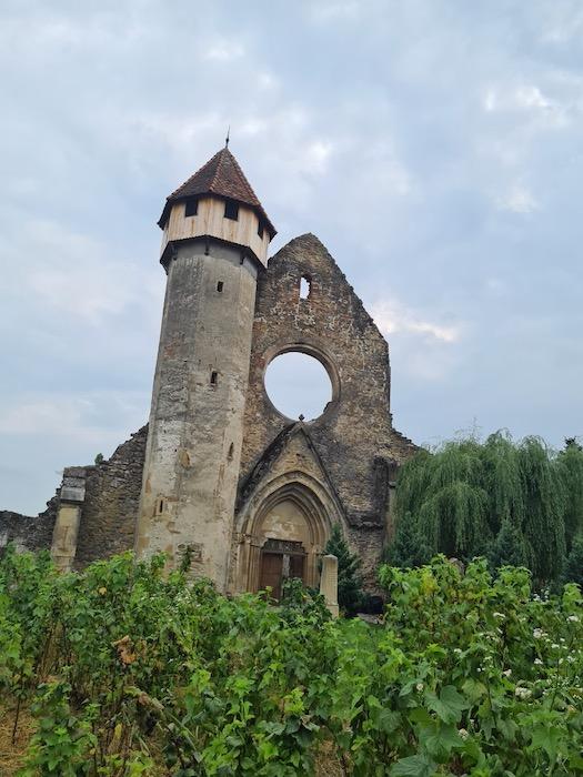Manastirea Cisterciana Carta 1 6