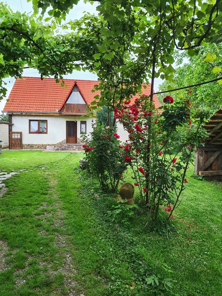 Casa Transilvaneana Rucar 5