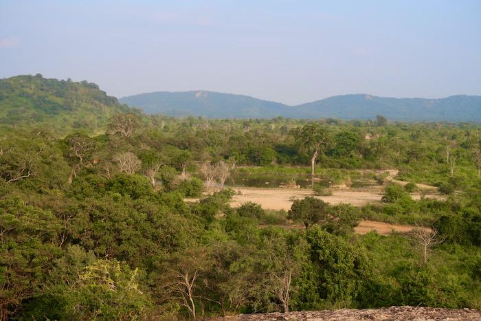 Hurulu Sri Lanka 2