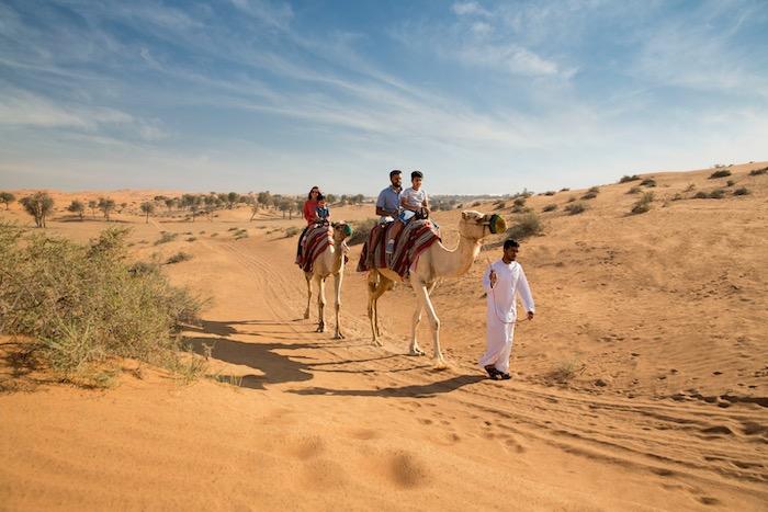 Ras Al Khaimah desert
