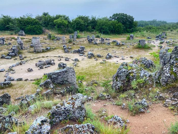 Padurea de piatra Varna