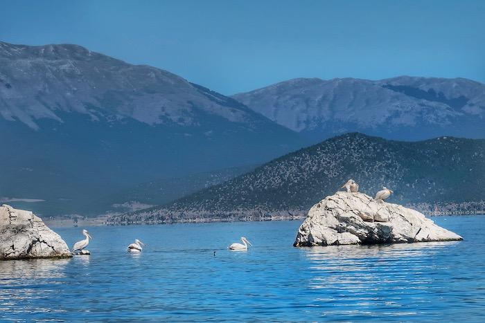 lacurile prespa 2